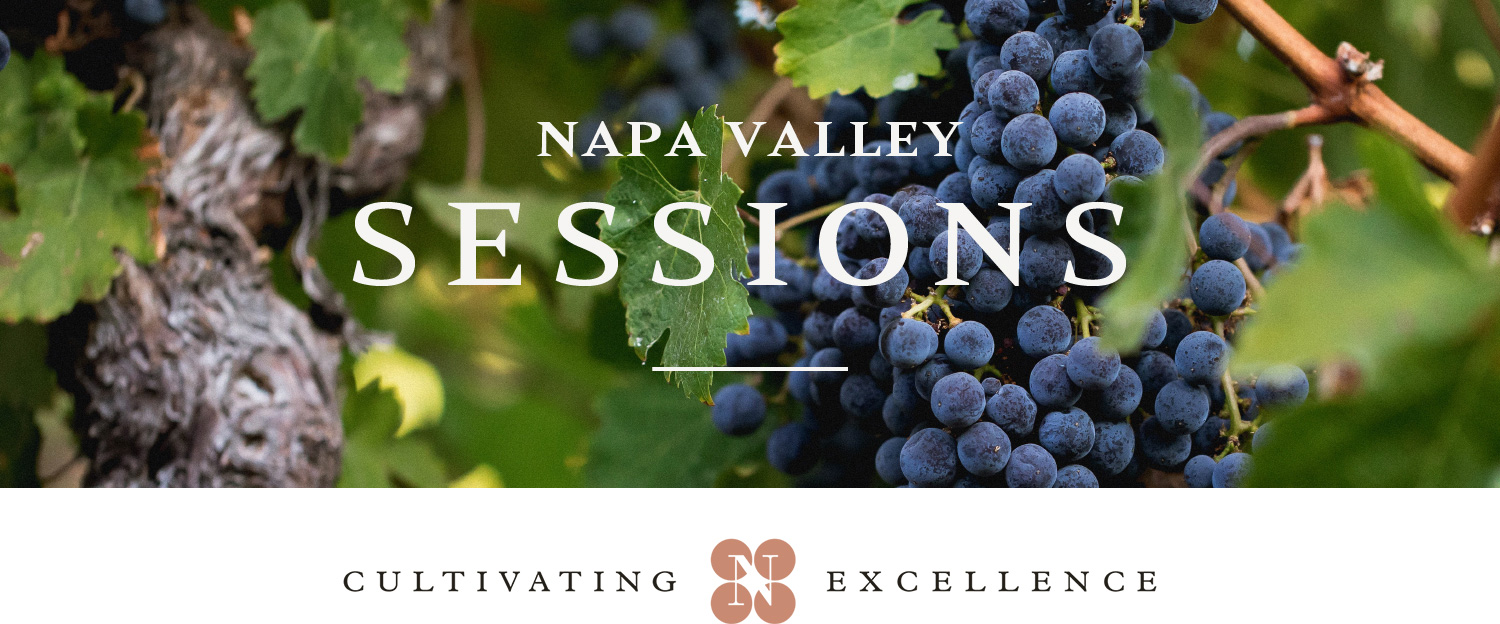 Napa Valley Cabernet Sauvignon in the Glass