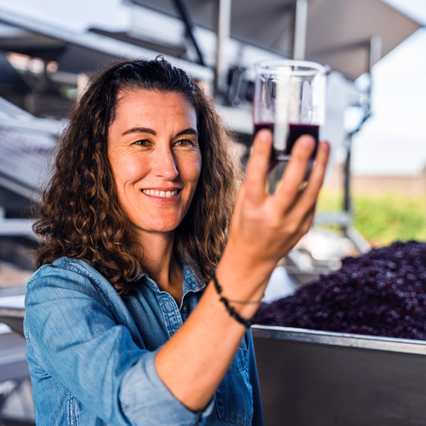 Molly Hill, Sequoia Grove Winery