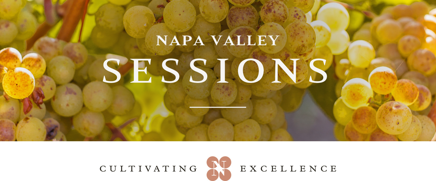 Library Wine Auction Special: Dive into the Unexplored Varieties of Napa Valley