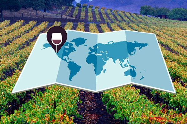 Wine on Earth: The Importance of Place